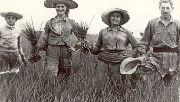 El libro 'Doñana, todo era nuevo y salvaje', de Jorge Molina, narra la creación de la Isla Mínima